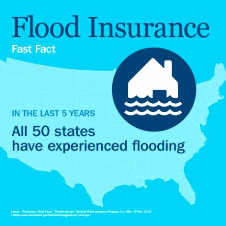 aaa home insurance quote photo - 1
