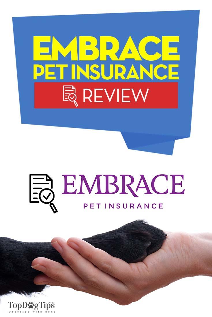 embrace pet insurance reviews photo - 1