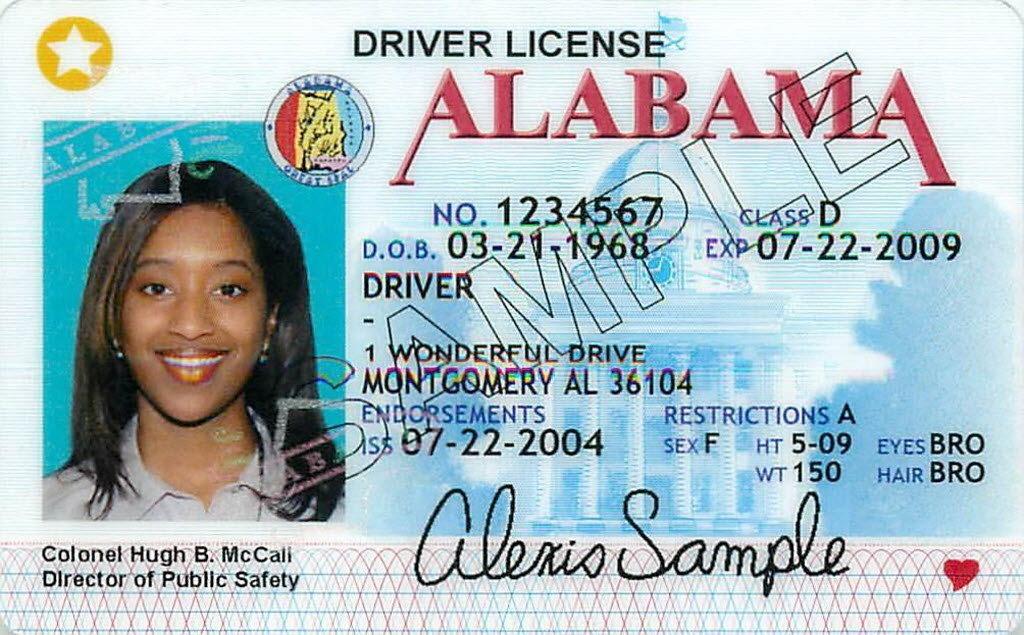 insurance licenses florida photo - 1