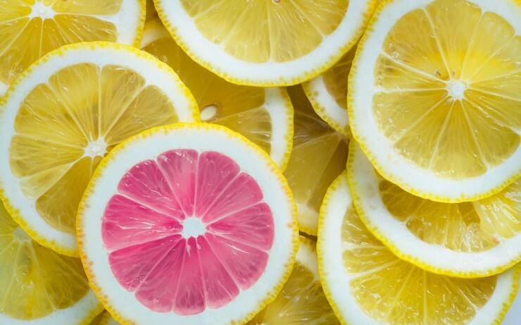 lemonade renters insurance review photo - 1