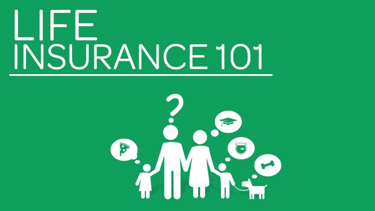 life insurance basics photo - 1