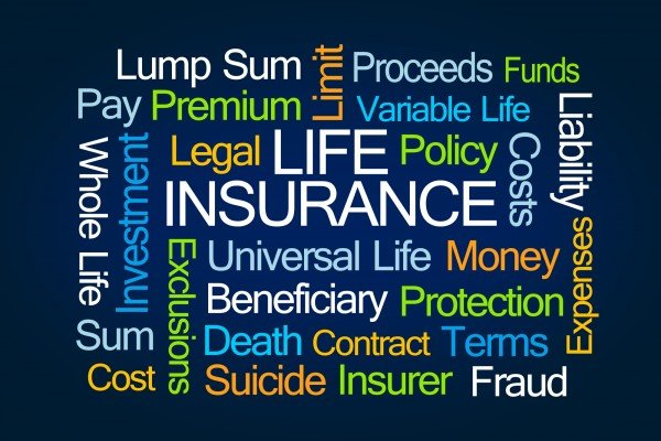 limited pay life insurance photo - 1