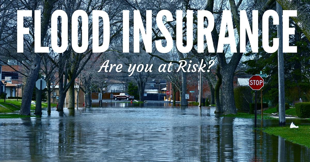 michigan department of insurance photo - 1