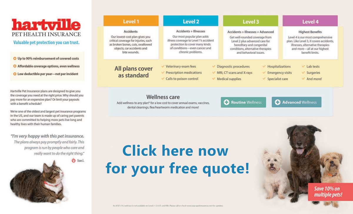 pet health insurance costs photo - 1