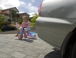 shelter auto insurance photo - 1