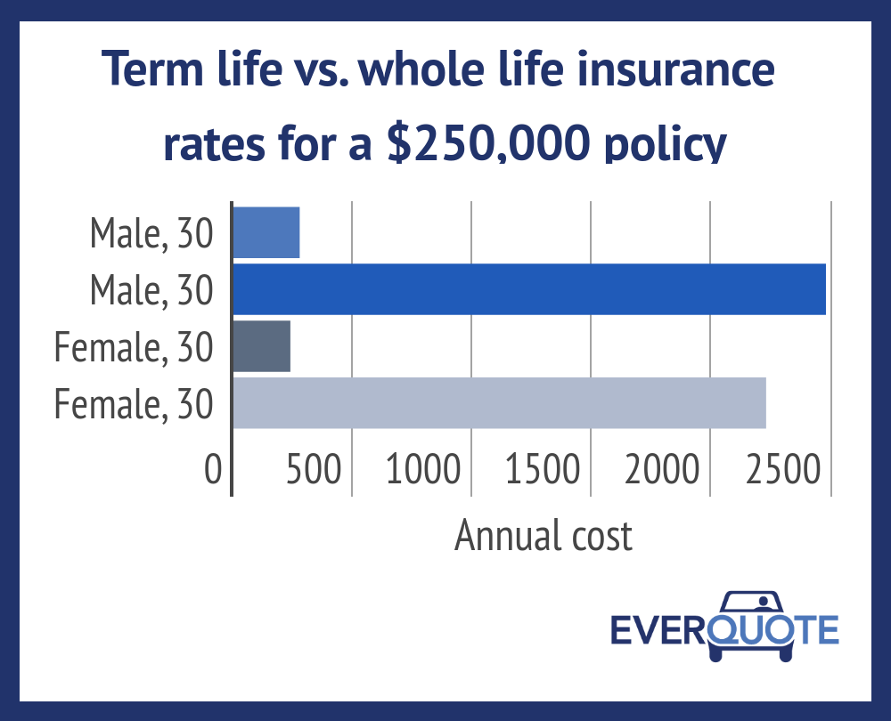 term life insurance vs whole life insurance photo - 1