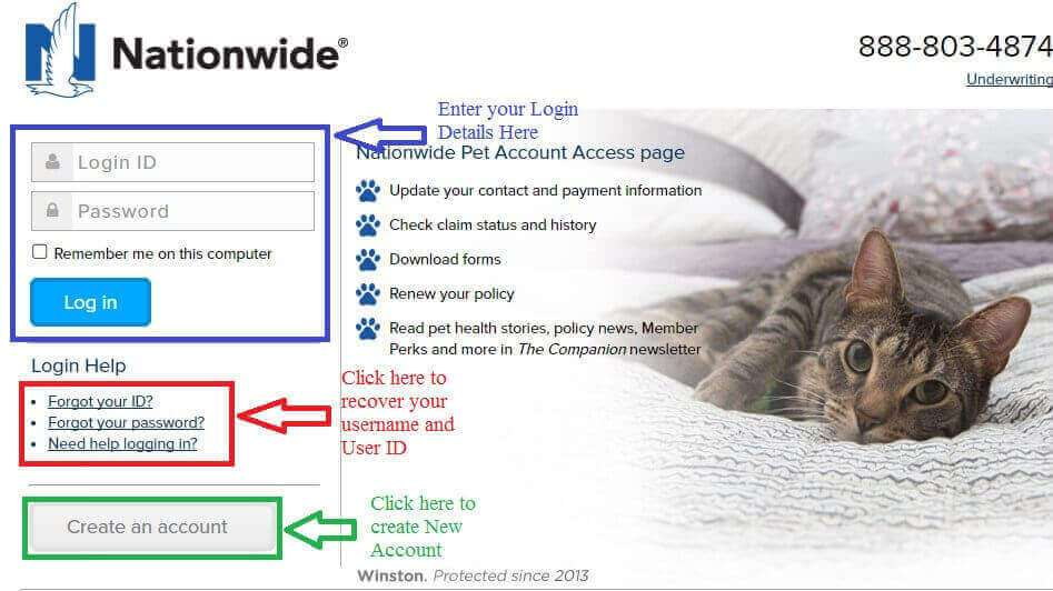 vpi pet insurance claim photo - 1