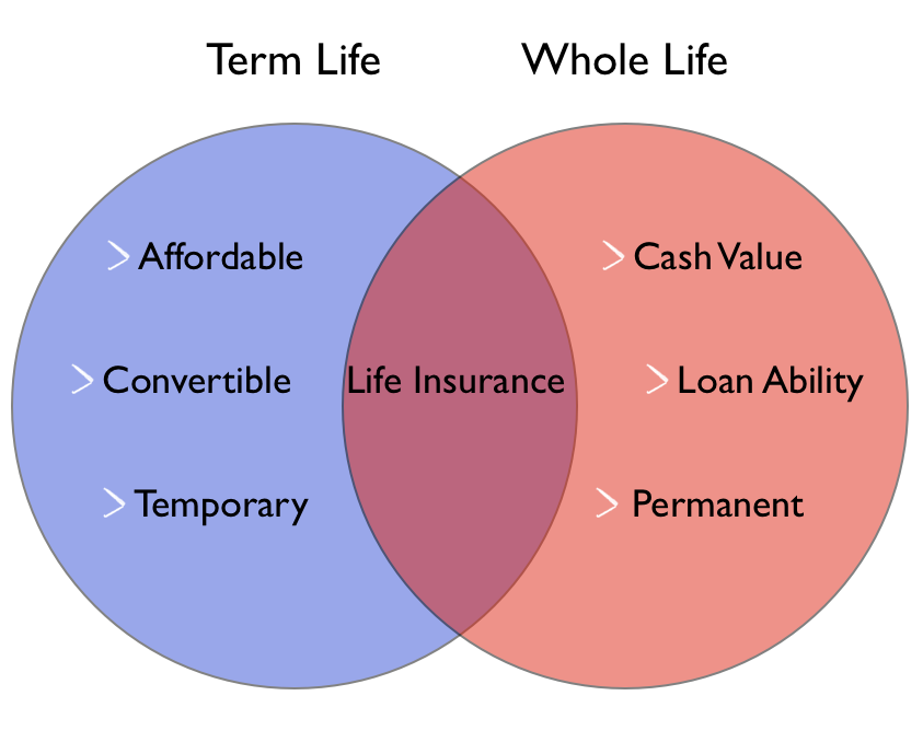 what is whole life insurance photo - 1